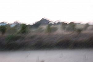 marais.jpg: 1000x665, 48k (10 mars 2016 à 20h20)