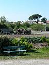 tracteur et banc.jpg: 600x801, 80k (July 03, 2021, at 01:02 PM)