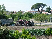 tracteur.jpg: 800x600, 103k (July 03, 2021, at 01:02 PM)