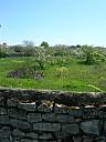 jardin2.jpg: 800x1066, 395k (10 mars 2016 à 20h16)