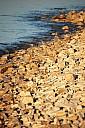 pierresblanches.jpg: 665x1000, 179k (10 mars 2016 à 20h15)